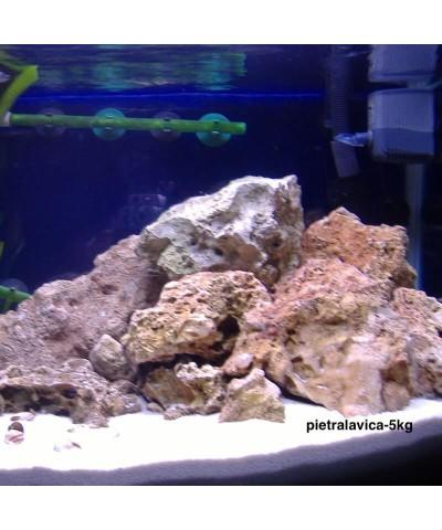 Lava stone 25 - 56Mm - barbecue - sauna - aquarium decoration 5kg LordsWorld - Barbecue - 3