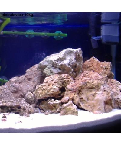 Piedra de lava 25 - 56Mm - barbacoa - sauna - decoración acuario 10kg LordsWorld - Barbecue - 5