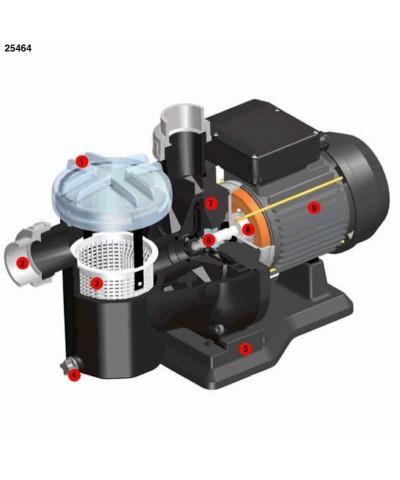 Dreiphasige selbstansaugende Schwimmbadpumpe SENA 0,75 PS - 25464 AstralPool - 2